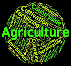 WBCS Exe Etc Exam Main Optional Subject Agriculture Syllabus