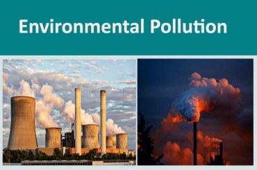 Essay Composition On Environment  Pollution And its remedy For WBCS Main Exam