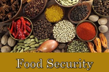 Essay Composition On Right to Food , WB Problem, Food Security Act For WBCS Main Exam
